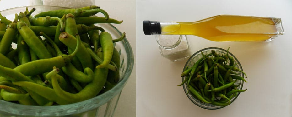 Piparra, pepper, chili, snack, meal, tapa, spanish food, catering, chef, home, take away, white wine, flesh